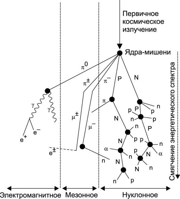 Лавинный механизм образования частиц при воздействии космического излучения [5]