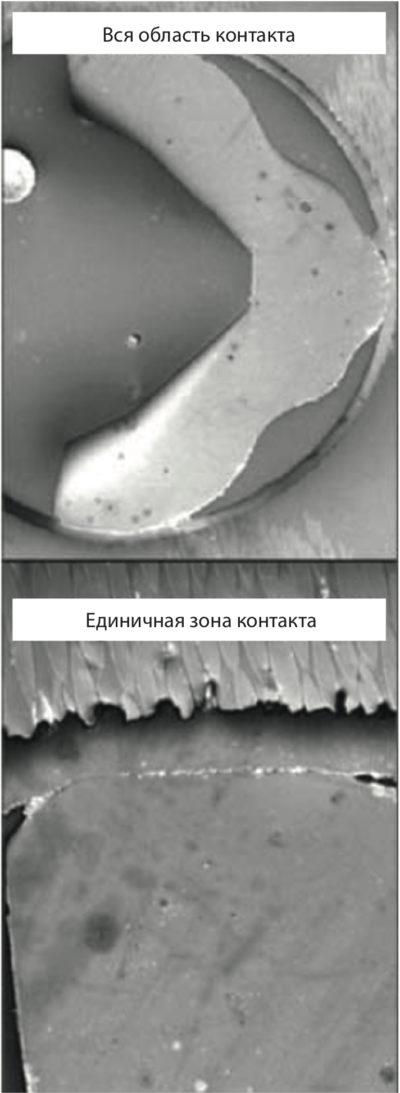 Микрография сечения сопрягаемых поверхностей с усиленным давлением («легкая» прессовая посадка), полученная с помощью сканирующего электронного микроскопа (SEM) [5]