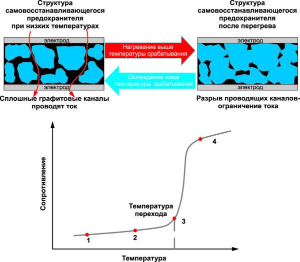 Структура и температурная зависимость сопротивления PPTC