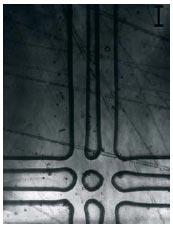 Рис. 3. Пересечение сдвоенных зон. Финишная поверхность. 100x