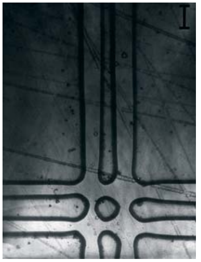 Пересечение сдвоенных зон. Финишная поверхность. 100x