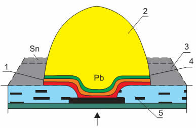 Поперечное сечение контакта при монтаже методом перевернутого кристалла: 1 — слой фазового состава Cr+Cu; 2 — шарик припоя 5% Sn-95%Pb; 3 — осажденный припой; 4 — интерметаллическое соединение Cu-Sn; 5 — стекло